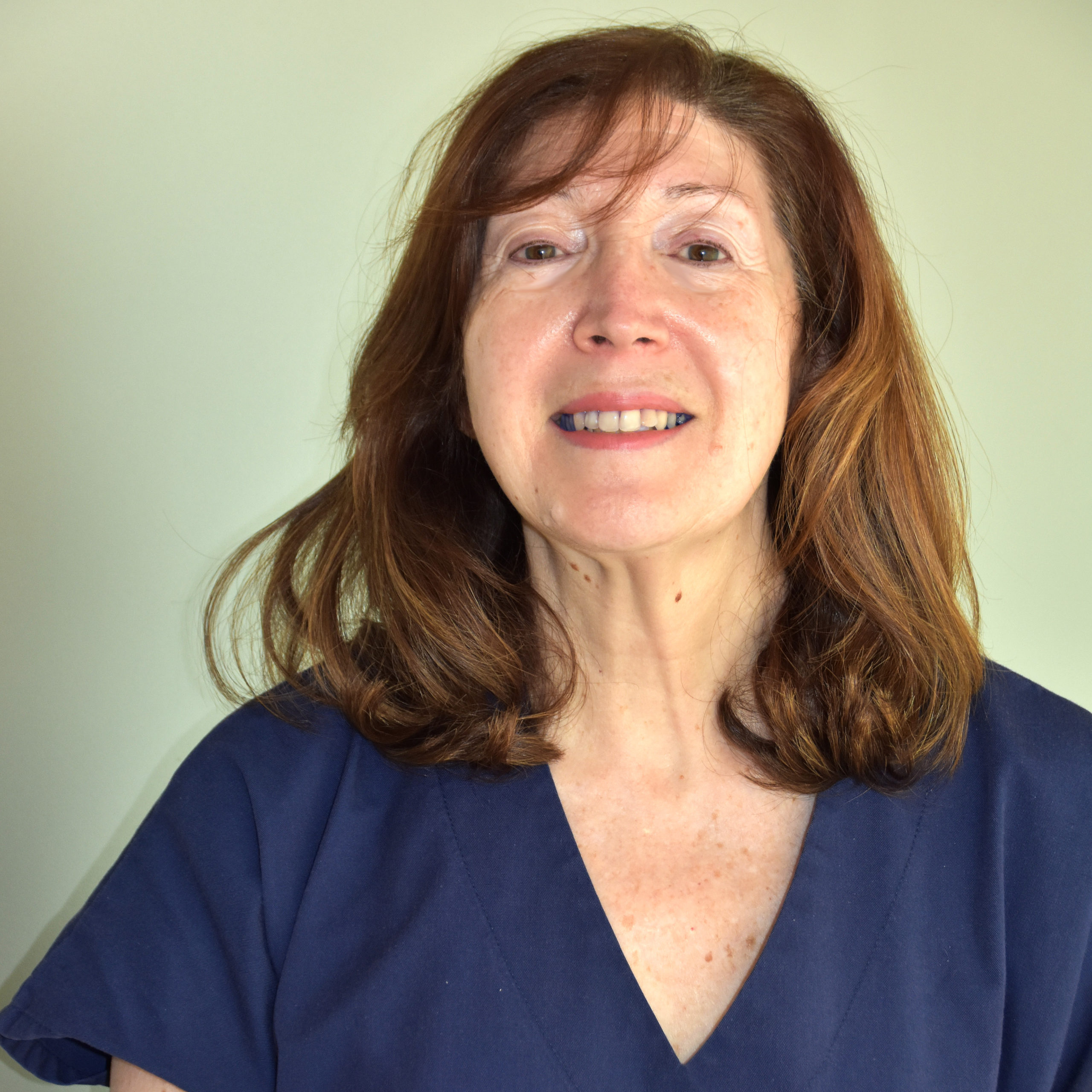Irene Boiso laboratorio fecundacion in vitro diagnostico genetico preimplantacional